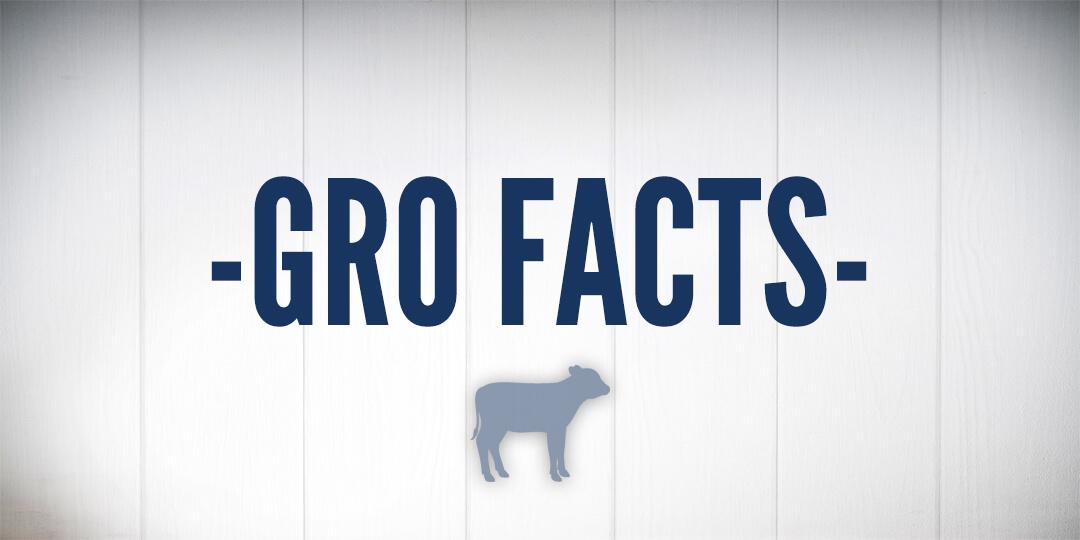 GroFacts - Grober Nutrition