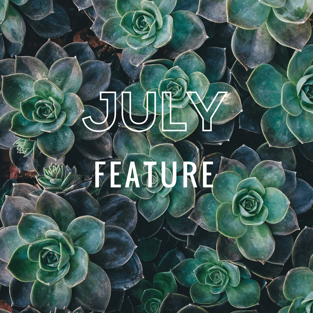 July feature home page