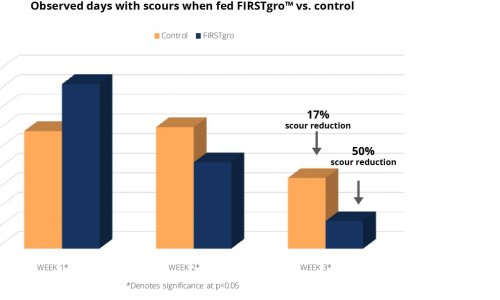 Observed days with scours when fed FIRSTgro vs control research graph