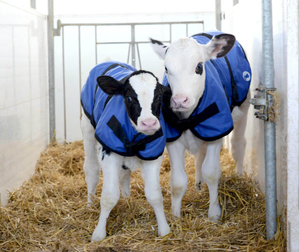 Grober Nutrition calf coat -small & large sizes